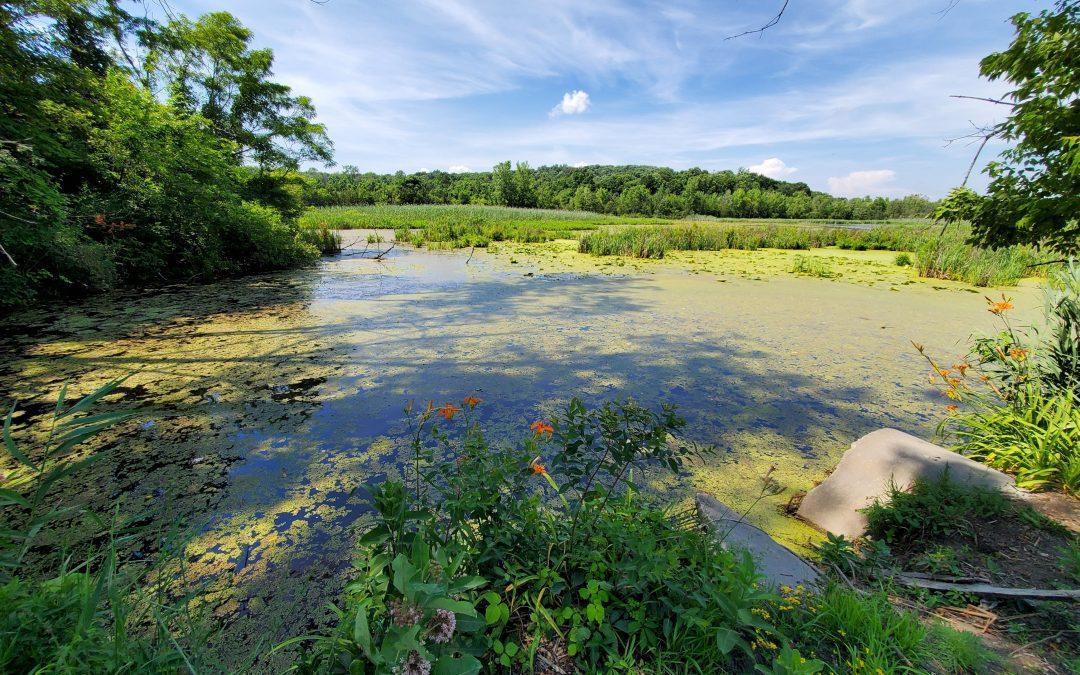 An Environmentally Beneficial Partnership: Peckham Industries Membership with the Wildlife Habitat Council